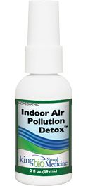 Indoor Air Pollution Detox
