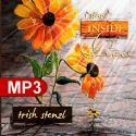 CI Stand Inside of Grace (MP3 Music Download) by Trish Stenzl - Click To Enlarge