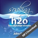 Soaking h2o Live Saturation Sessions (MP3 music download) by John Belt