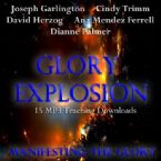 Glory Explosion: Manifesting Glory (15 MP3 Downloads) by Joseph Garlington, Cindy Trimm, David Herzog, Ana Mendez Ferrell, Dianne Palmer