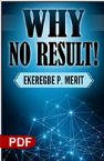 Why No Result (PDF Download) by Ekeregbe P. Merit